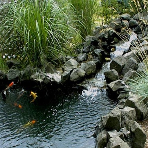 Professional quality coatings for fountains and ponds